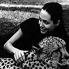 brad angelina wildlife farm02