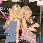 paris nicky hilton thavasa01