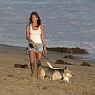 jennifer aniston dogs 06