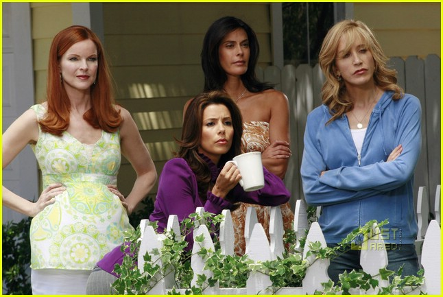 Idea and Dana delany desperate housewives
