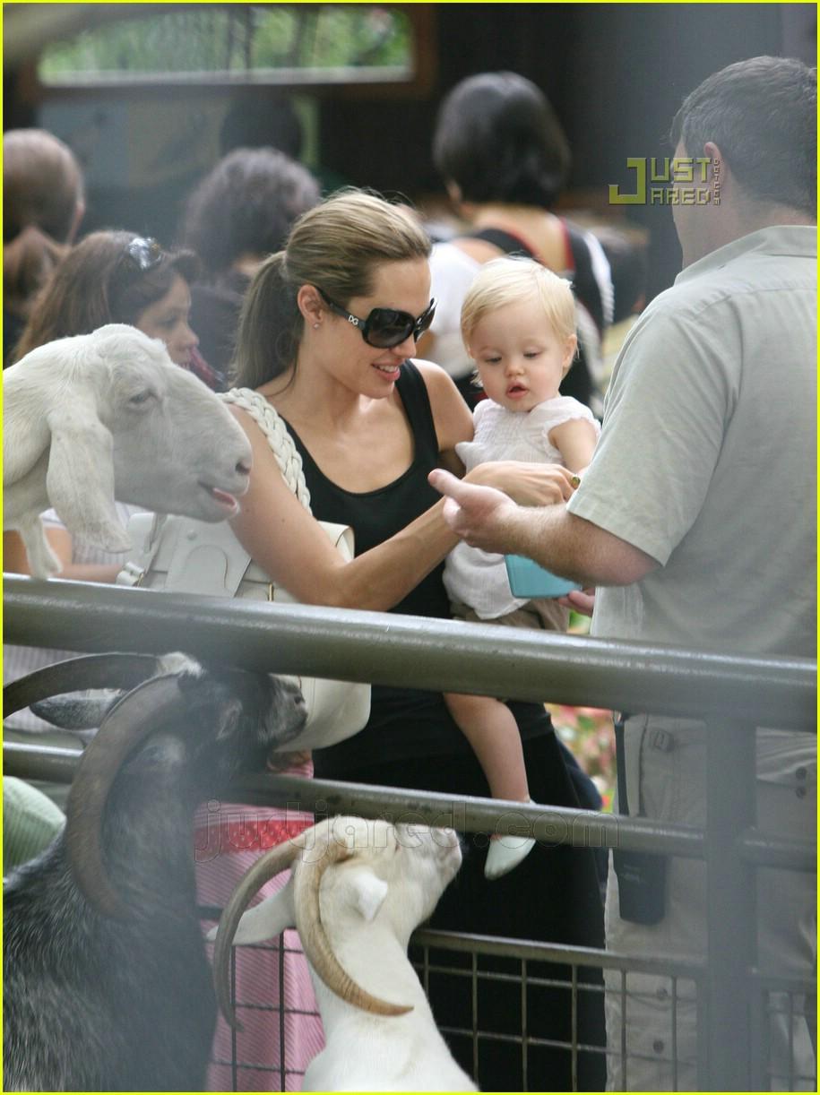 angelina jolie petting zoo 04554141