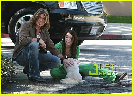miley cyrus stray dog 07961621