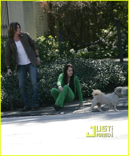 miley cyrus stray dog 16