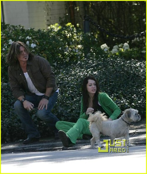 miley cyrus stray dog 17961721