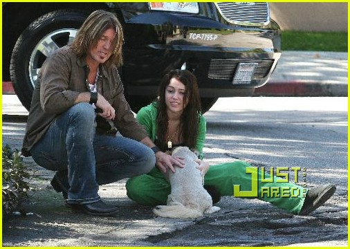 miley cyrus stray dog 20
