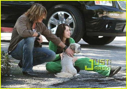 miley cyrus stray dog 26961811