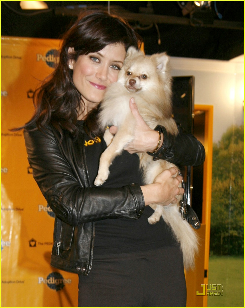 kate walsh dogs rule 01