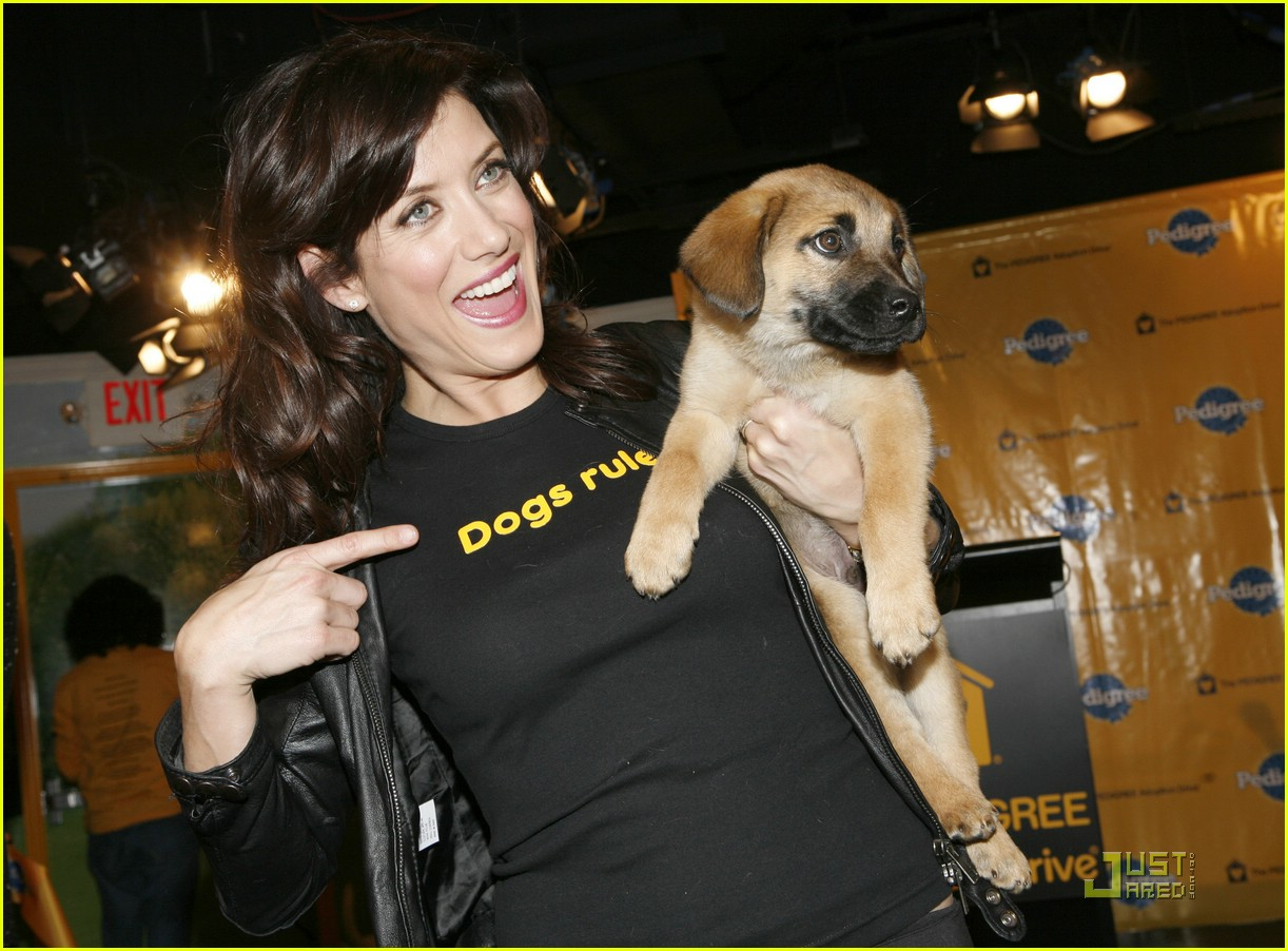 kate walsh dogs rule 06915811