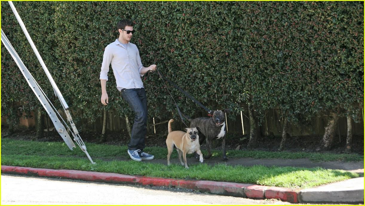 adam brody walking dogs 061024001
