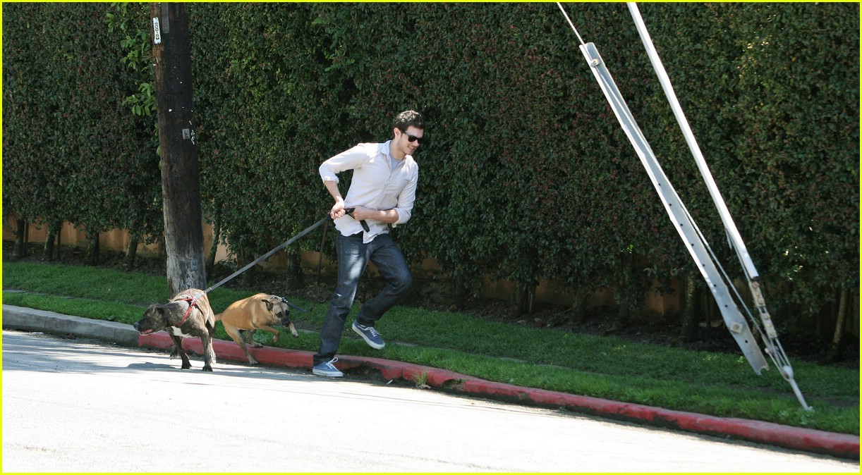 adam brody walking dogs 081024021