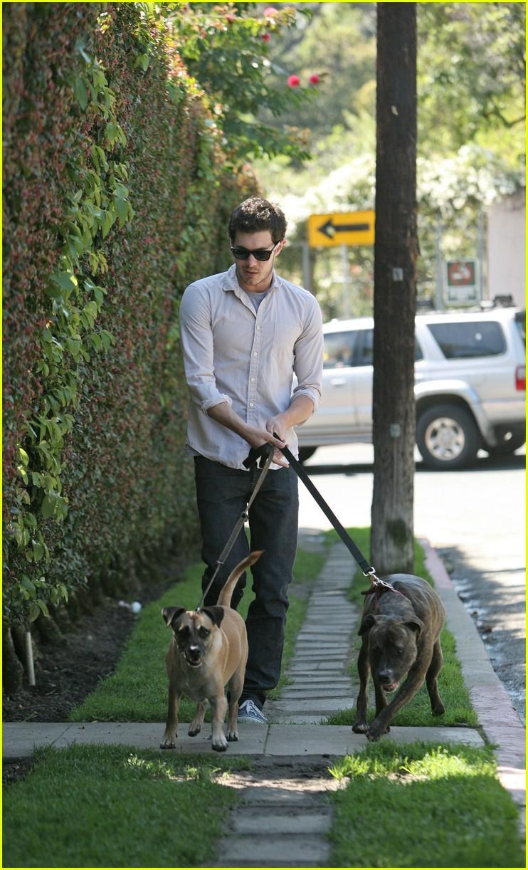 adam brody walking dogs 111024051