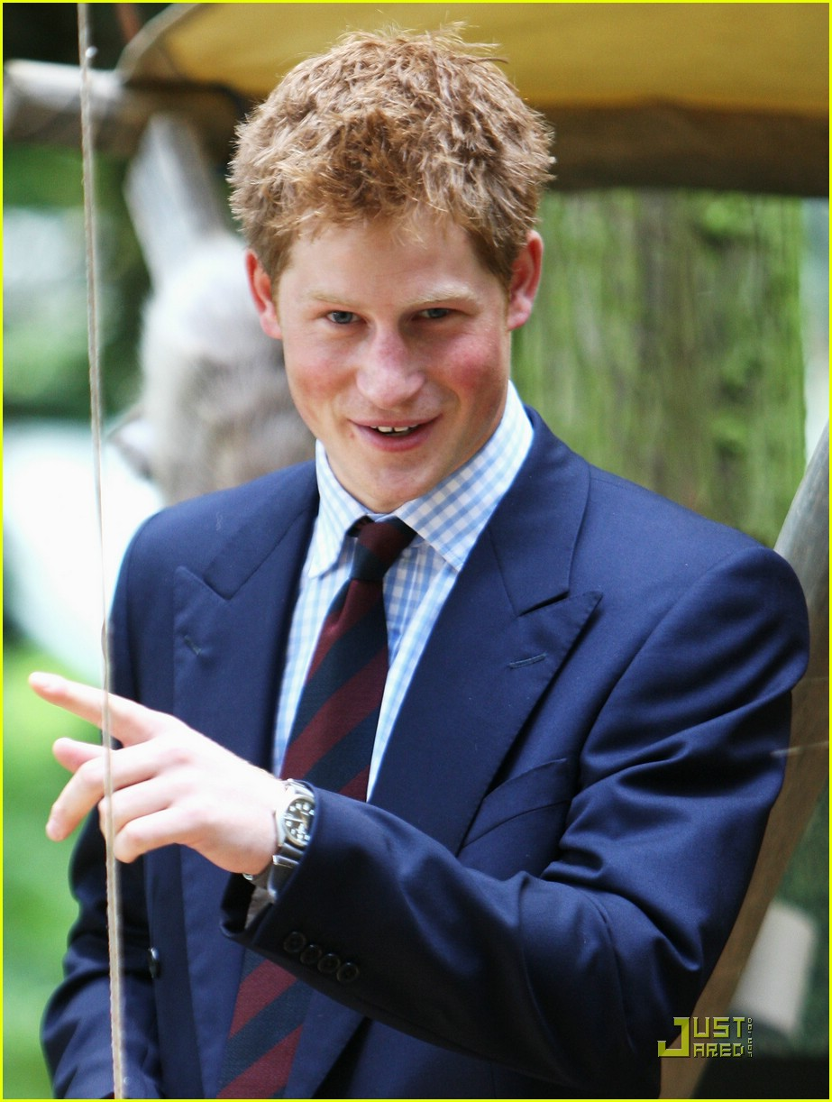 prince harry royal norfolk show 401227721
