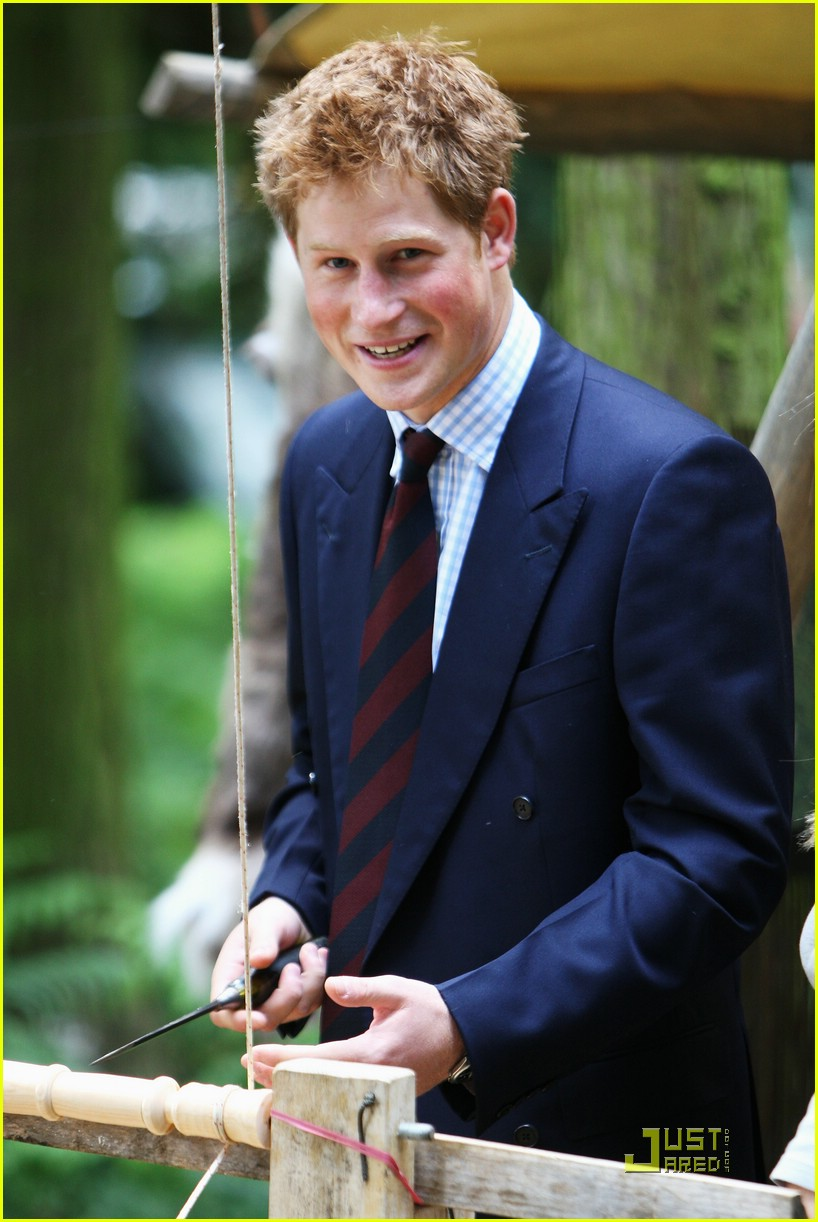 prince harry royal norfolk show 441227761