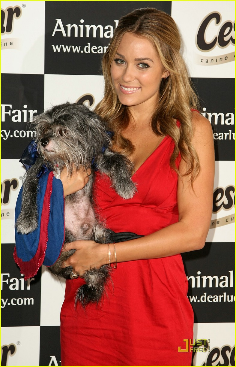 lauren conrad paws for style 02