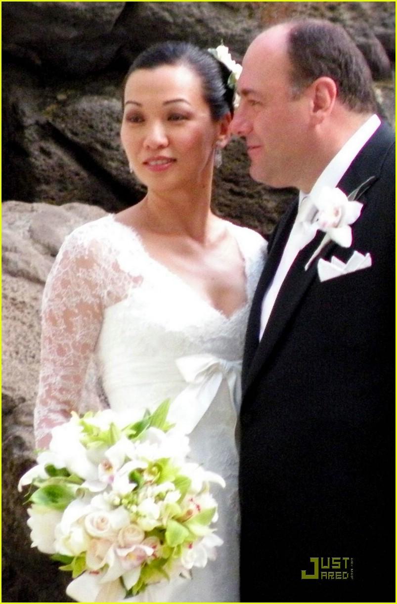 james gandofini wedding pictures 031383791