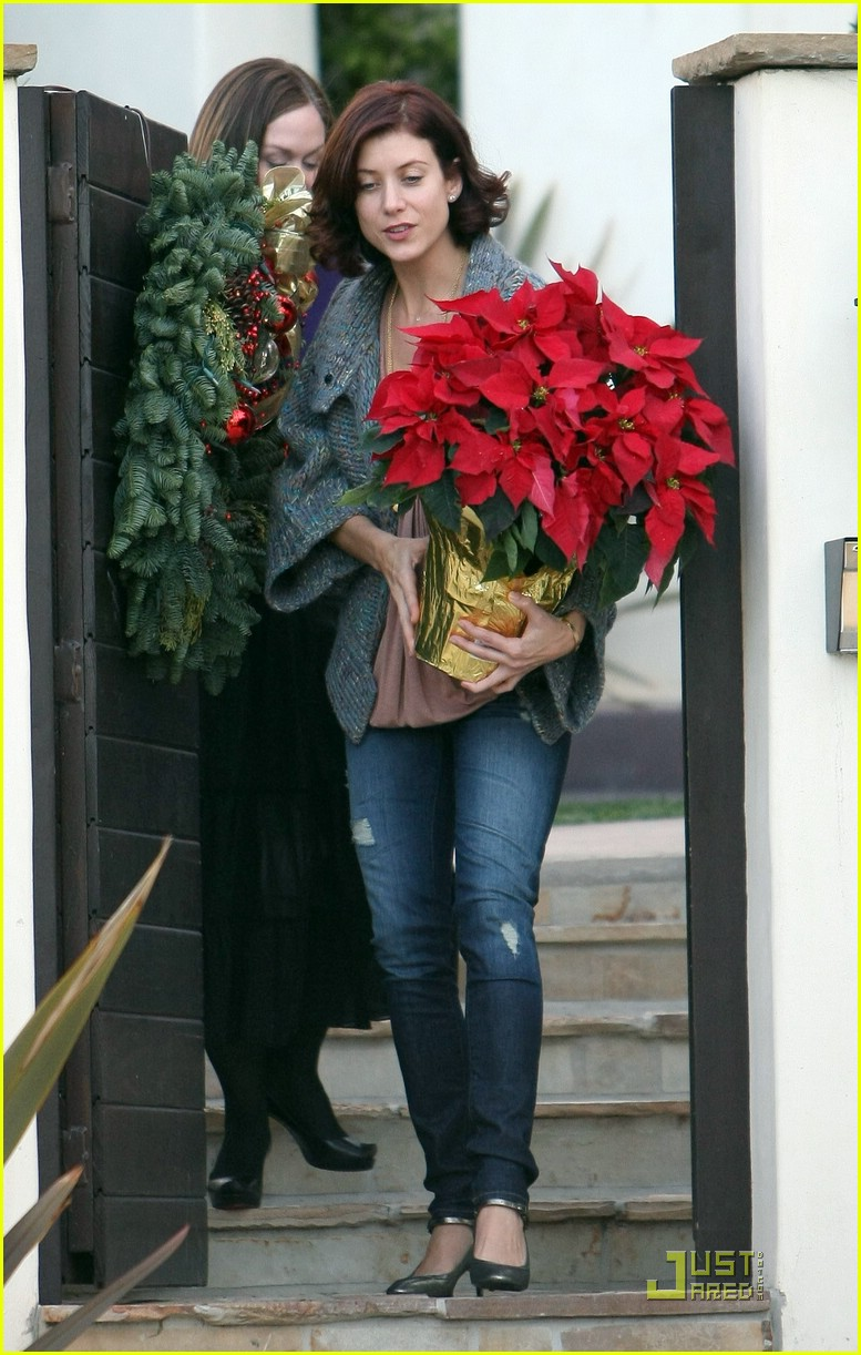 kate walsh poinsettia pretty 141597441