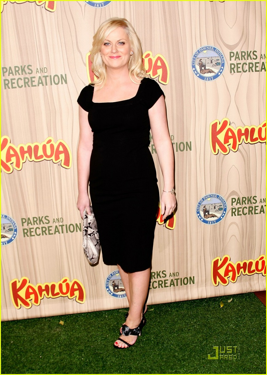 amy poehler parks and recreation 031845641
