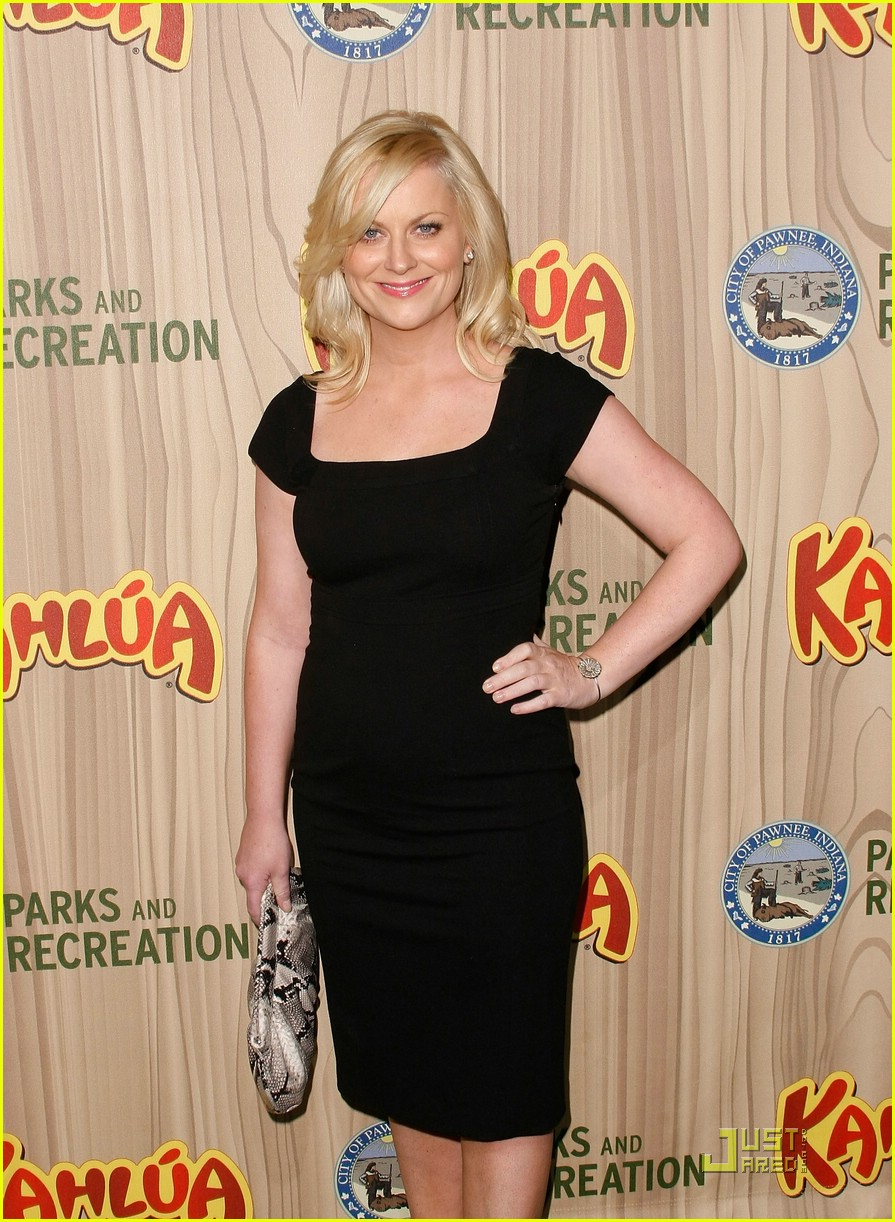 amy poehler parks and recreation 171845781