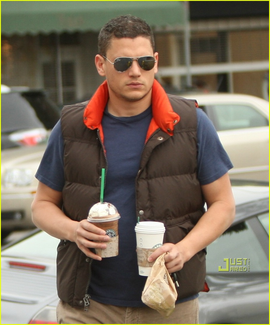 Wentworth Miller: You're Hot And You're Cold: Photo