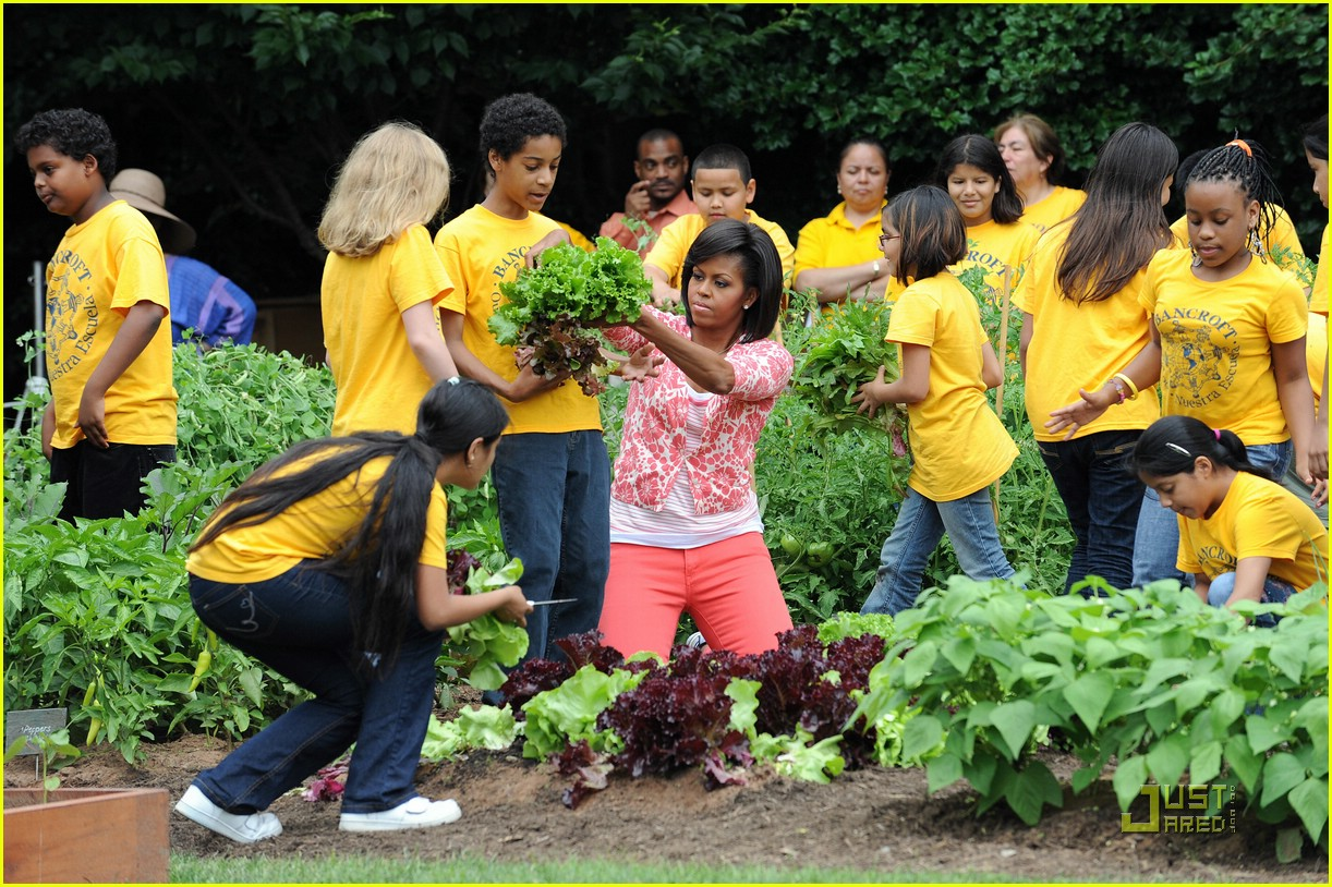 Michelle Obama Harvests The White House Kitchen Garden Photo 2001131 Michelle Obama Pictures