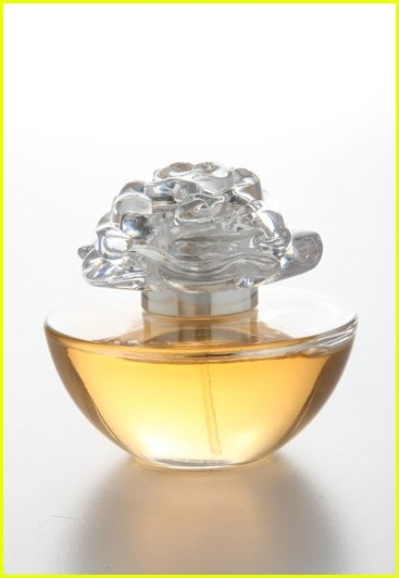 reese witherspoon in bloom fragrance 021983231