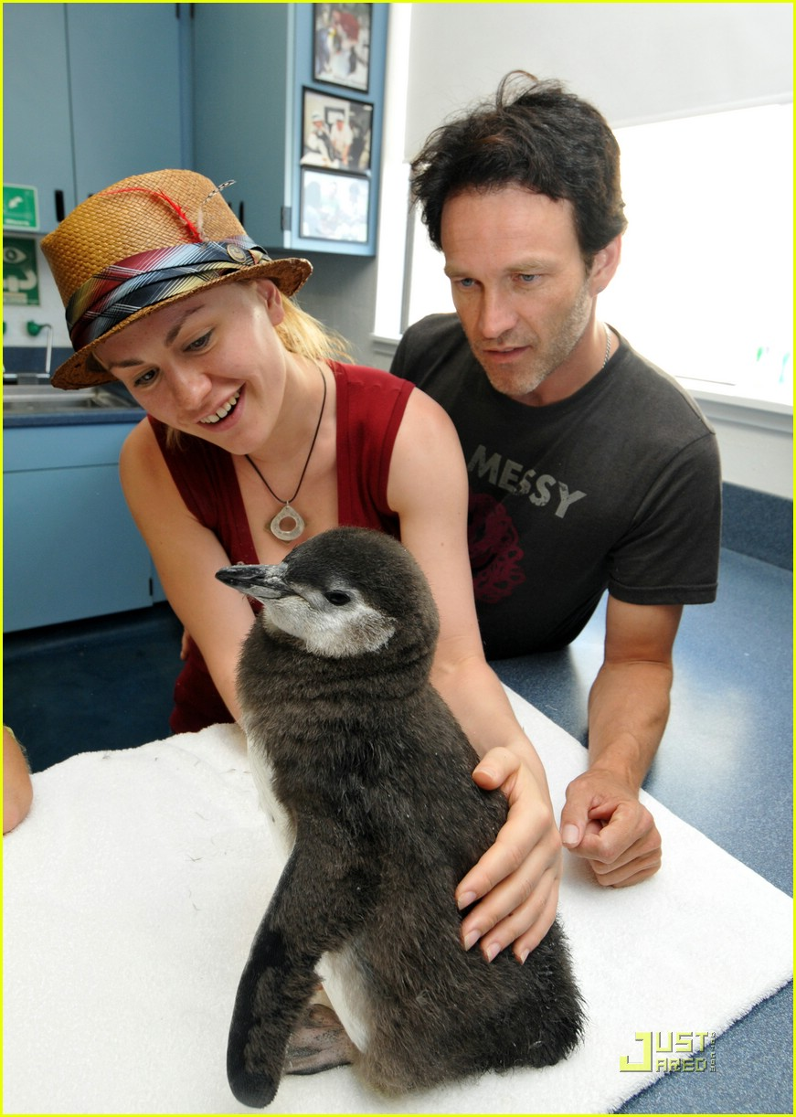 anna paquin stephen moyer seaworld 10