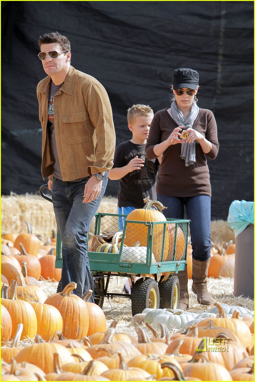 david boreanaz pumpkin picking 04