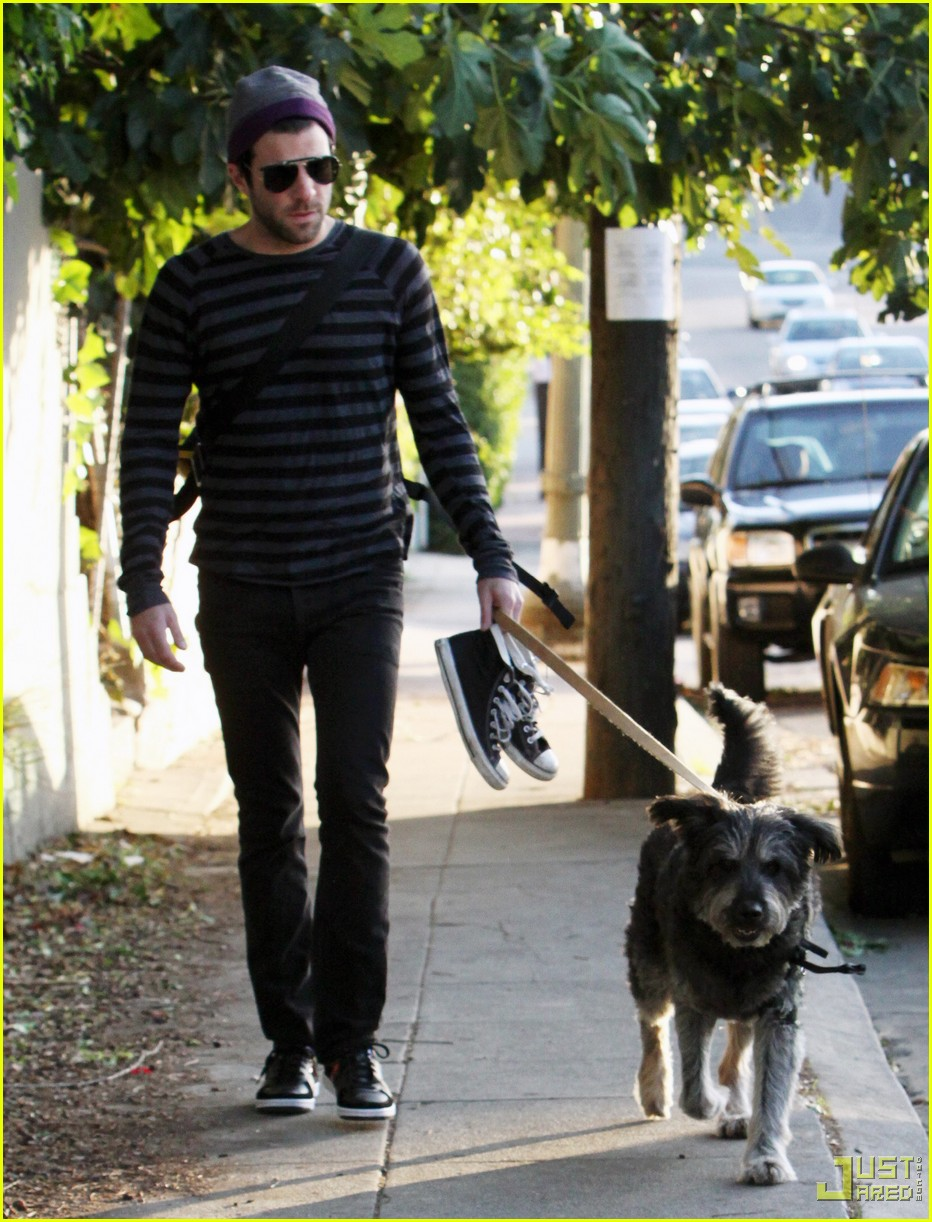 zachary quinto walking dog 02