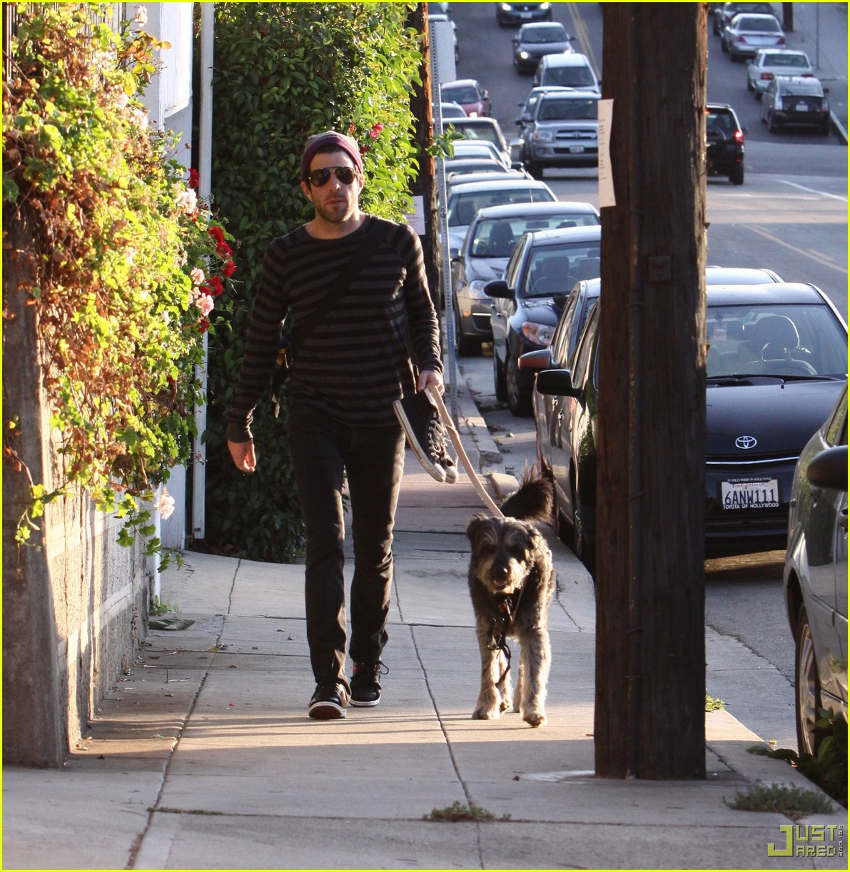 zachary quinto walking dog 03