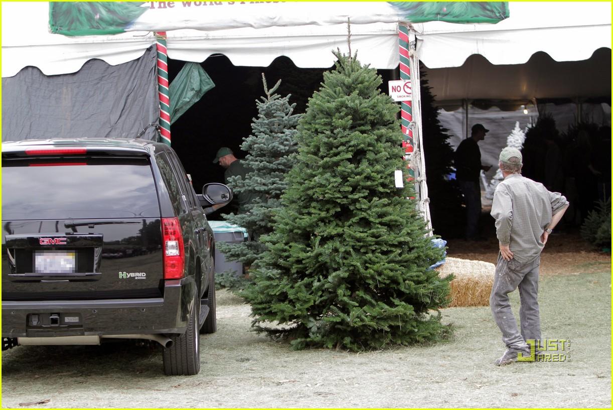 jessica alba christmas tree shopping 082400042