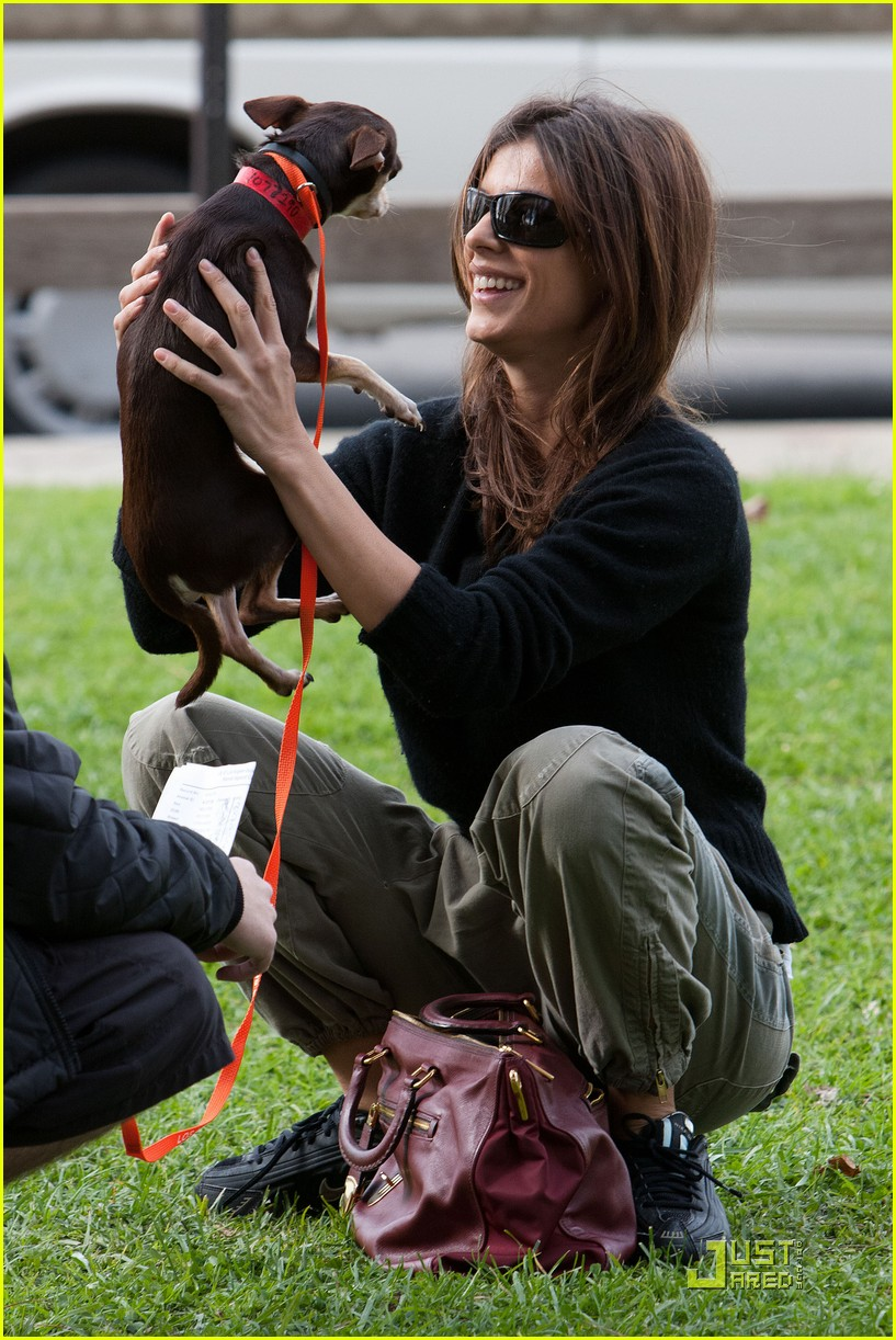 elisabetta canalis adopts a dog 08