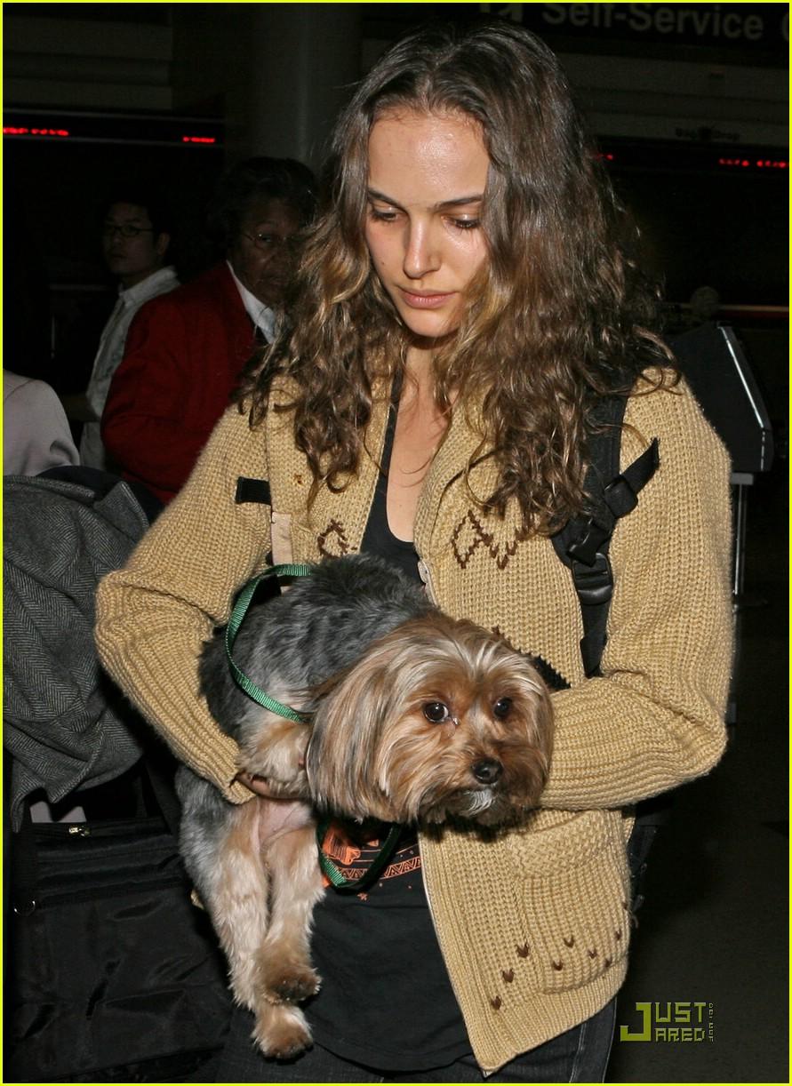 celebrities pets 022403555