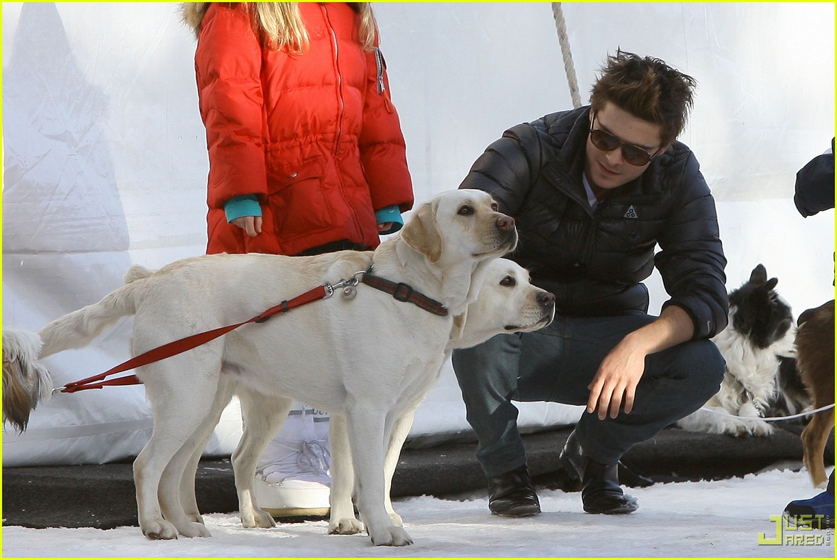 zac efron plays with dogs aspen 13