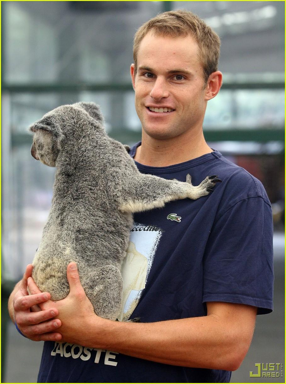 andy roddick brooklyn decker koala couple 032406160