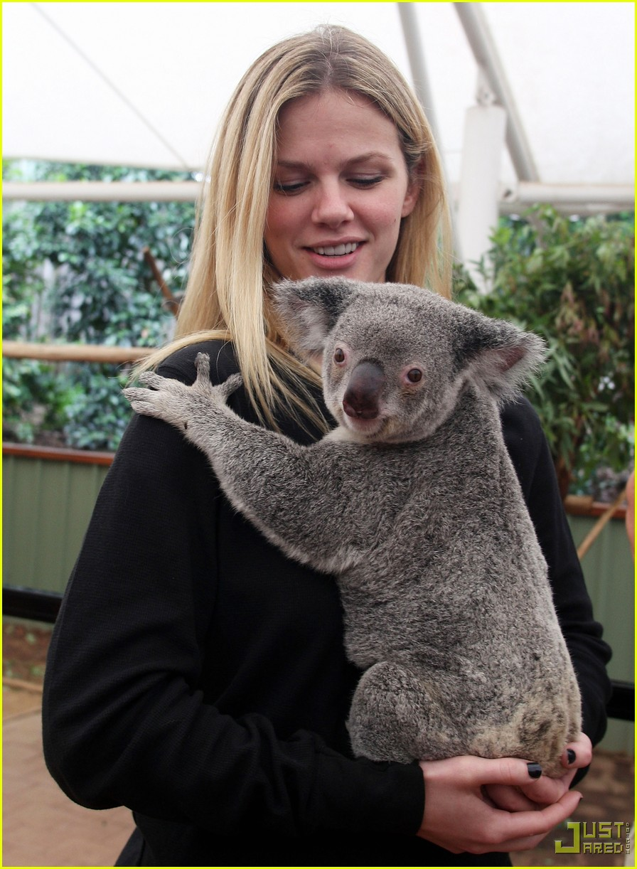 andy roddick brooklyn decker koala couple 04