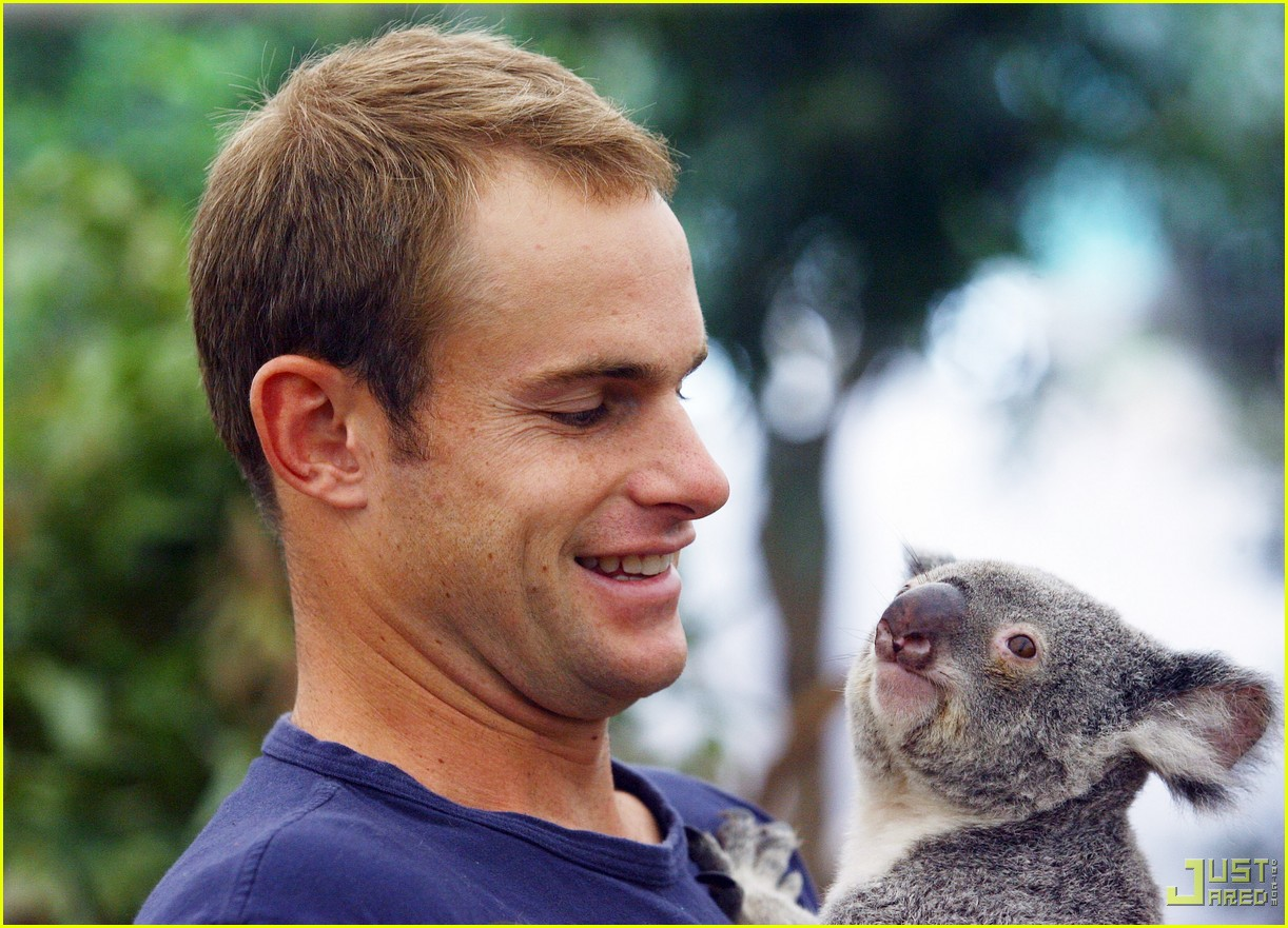 andy roddick brooklyn decker koala couple 05