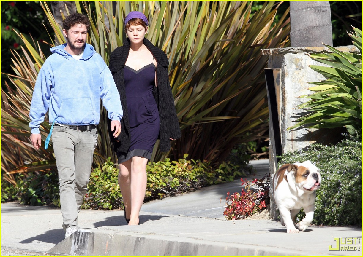 Shia LaBeouf & Carey Mulligan: Out with Brando the Bulldog! Shia Labeouf