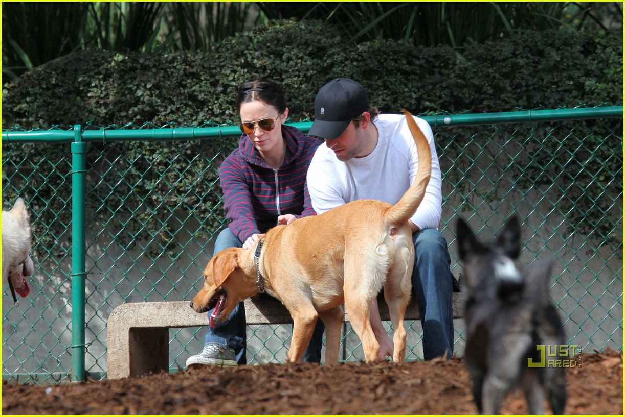 john krasinski emily blunt dog park 062429162