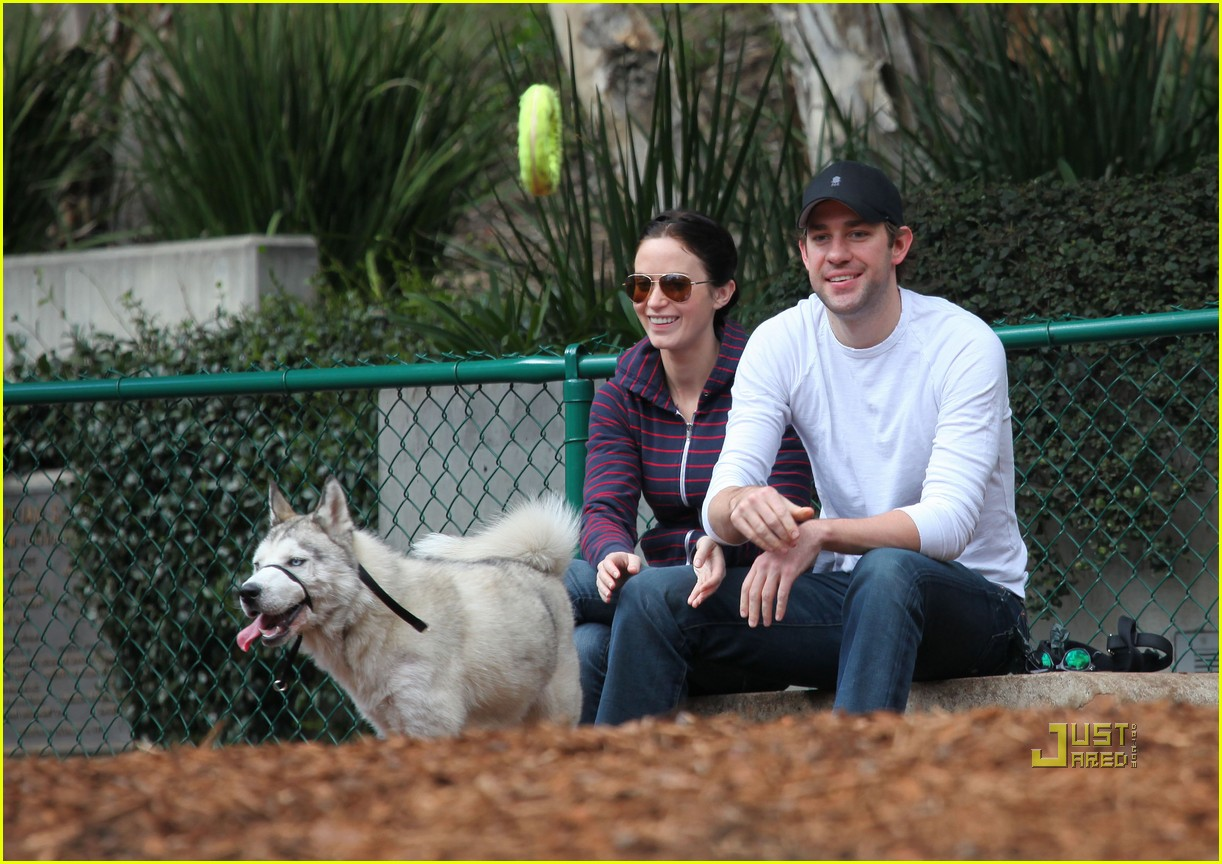 john krasinski emily blunt dog park 112429167