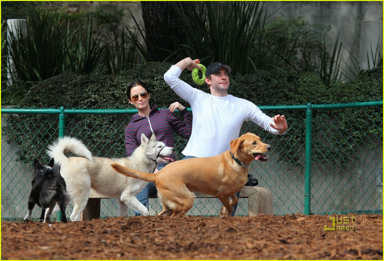 john krasinski emily blunt dog park 142429170