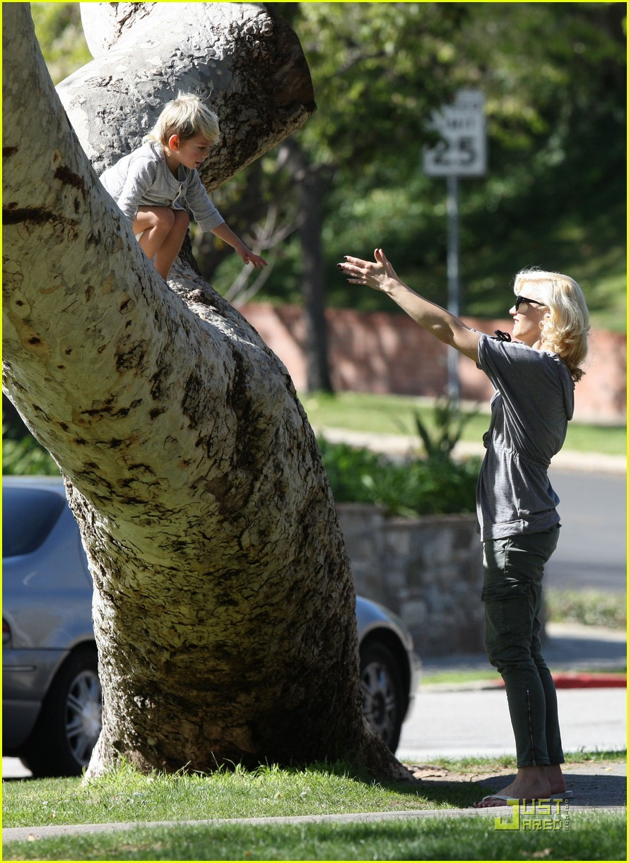 gwen stefani tree tire 12