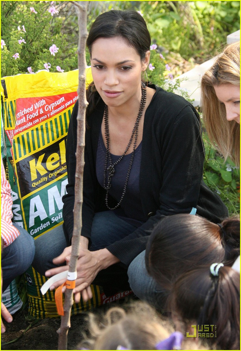 rosario dawson goes green 172434704