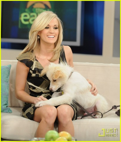 carrie underwood early show pedigree adoption drive 022438842