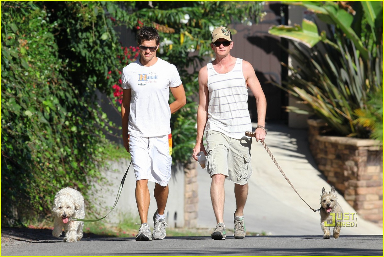 neil patrick harris david burtka dogwalking 062474784