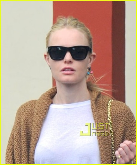 kate bosworth dog day at the vet 032485771