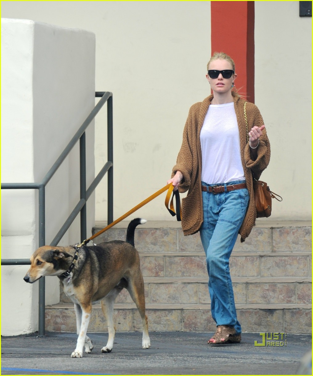 kate bosworth dog day at the vet 05