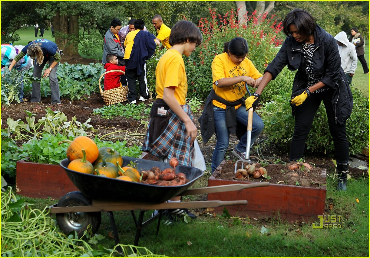 Michelle Obama White House Kitchen Garden Fall Harvest 032489246
