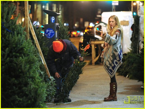 Blake Lively: Christmas Tree Shopping!: Photo 2503770 ...