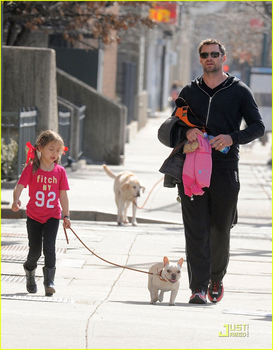 hugh jackman dog walk with ava 03