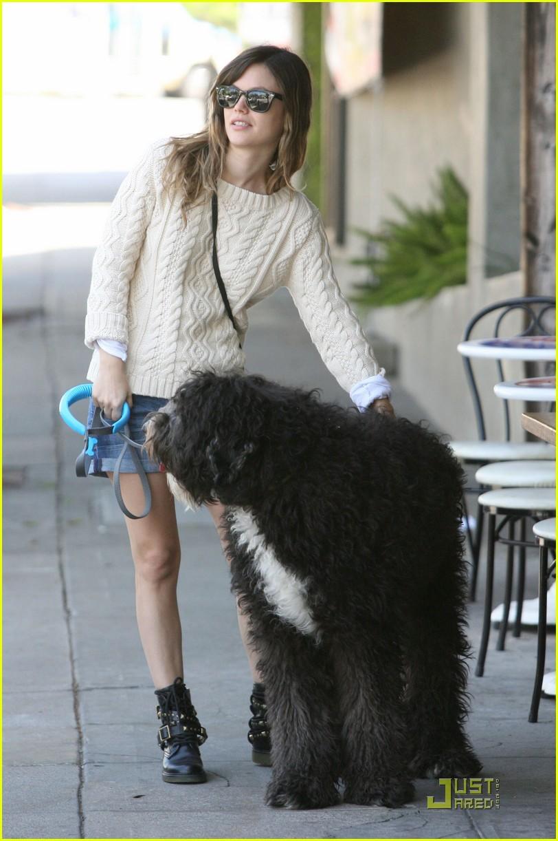 rachel bilson walks the dog 042535721